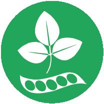 SOJA e produtos à base de soja exceptuando: Óleo e gordura de soja totalmente refinados; Tocoferóis mistos naturais (E 306), D-alfa-tocoferol natural, acetato de D-alfa-tocoferol natural, succinate de D-alfa-tocoferol natural derivados de soja; Fitoesteróis e ésteres de fitoesterol derivados de óleos vegetais produzidos a partir de soja; Éster de estanol vegetal produzido a partir de esteróis de óleo vegetal de soja;