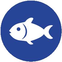 PEIXES e produtos à base peixe, exceptuando: Gelatina de peixe usada como agente de transporte de vitaminas ou de carotenóides; Gelatina de peixe ou ictiocola usada como clarificante de cerveja e vinho.