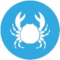 CRUSTÁCEOS(lagosta, camarão, caranguejo, percebes) e produtos à base de crustáceos.